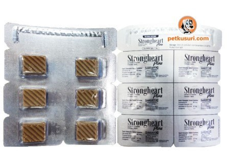 strongheartplus_smalldog_medicine__46274_zoom[1].jpg